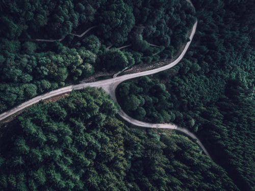 aerial shot of a dense forest with a winding road cutting through the green landscape
